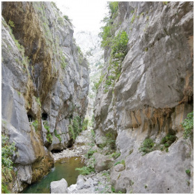 Gorge of River Cares